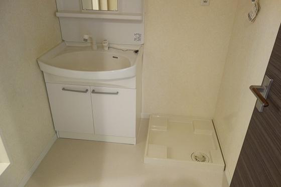 洗面所独立洗面はシャンプードレッサー