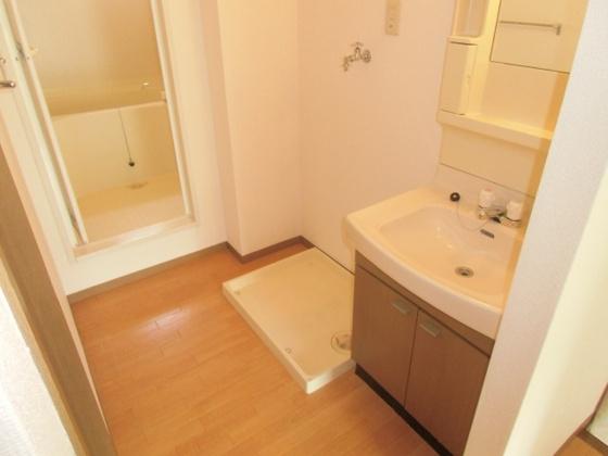洗面所室内洗濯機置き場です