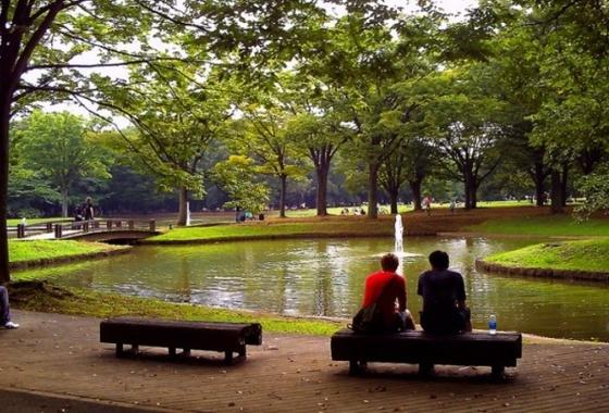 周辺代々木公園でのんびり