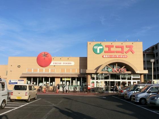 周辺近隣のスーパー