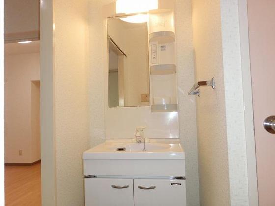 洗面所独立洗面台 右手に室内洗濯機置き場があります