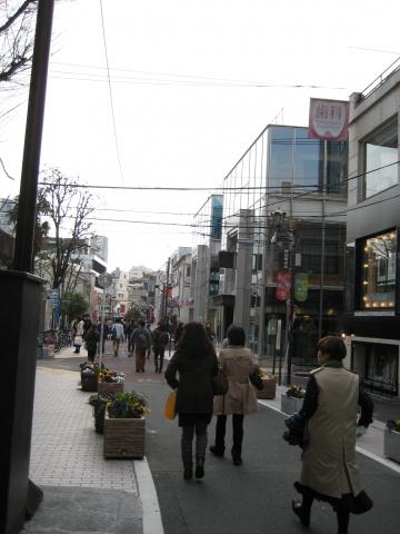 周辺キャットストリート 2015年3月14日撮影
