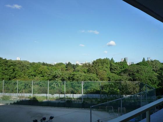 展望東京タワーも見えます!