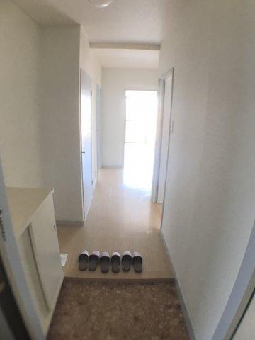玄関シューズボックスの上やシューズボックスと収納の間のスペースをあなたならどの様に活用致しますか?