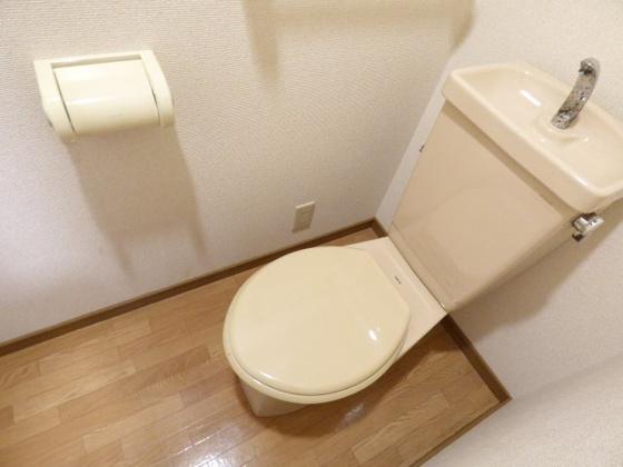 トイレやっぱりうれしいセパレート。