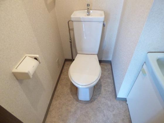 トイレお手入れし易いシンプルトイレ。