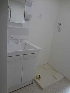 洗面所シャワー付き洗面化粧台