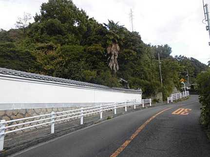 前面道路含む現地写真建築条件無し・更地渡し相談可 敷地面積広々137坪