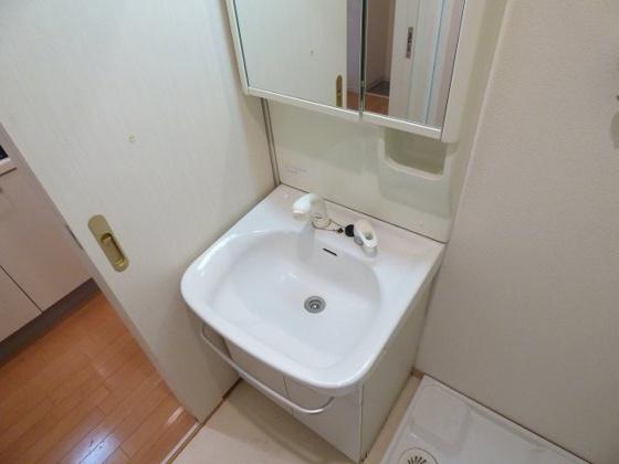洗面所清潔なシャンプードレッサー。