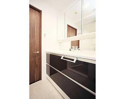 洗面所スタイリッシュなデザインのシャワー付き洗面化粧台
