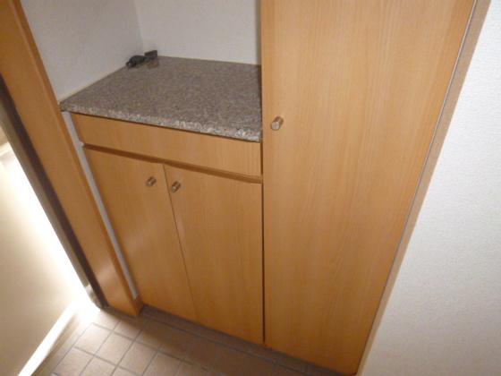 キッチン浄水器付き水栓金具
