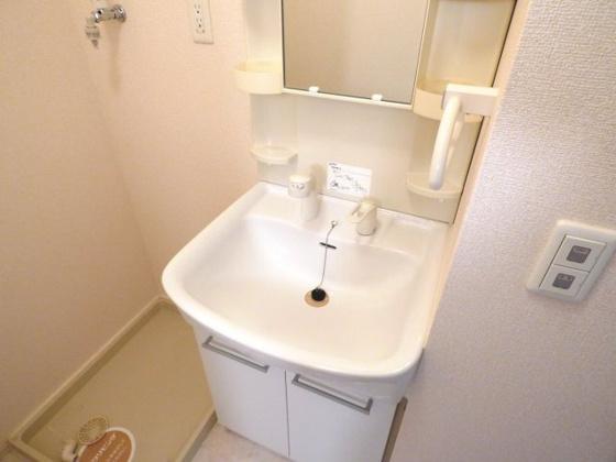洗面所シャンプードレッサー完備。
