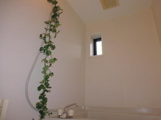 浴室お風呂窓・換気扇