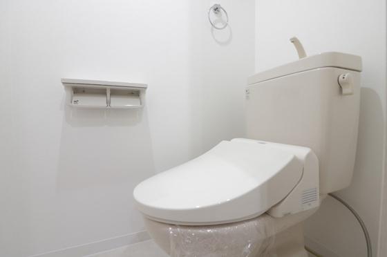トイレ温水洗浄便座新調しました(CF・クロス張替、Wペーパーホルダー・タオル掛け交換等)