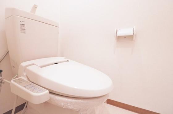 トイレ温水洗浄便座付のトイレです(CF・クロス張替、ペーパーホルダー・タオルリング新調等)