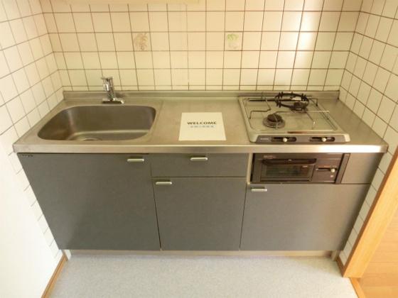 キッチン2口コンロにグリル付のシステムキッチン