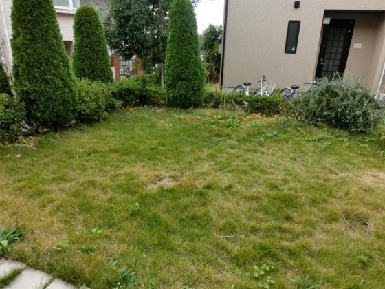 庭お庭が付いてます