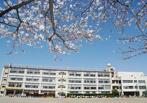 川口市立上青木小学校の画像