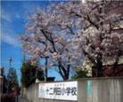 川口市立十二月田小学校の画像