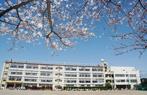 川口市立 上青木小学校の画像