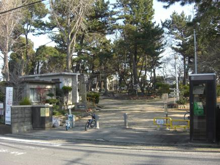 八幡山公園01