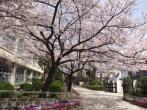 園田中学校の画像