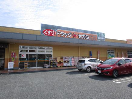 ドラッグセガミ 朱雀店01