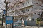 戸田市立笹目小学校の画像