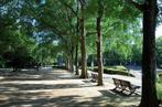 北浦和公園の画像