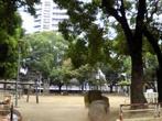 阪南北公園の画像