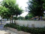 桃ケ池公園の画像
