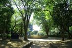 常盤公園の画像