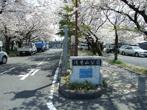 浅井山公園の画像