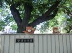 谷津幼稚園の画像