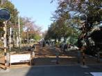 東調布公園の画像