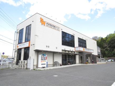 奈良動物医療センター01