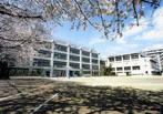 世田谷区立船橋希望中学校の画像