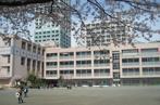 新宿区立花園小学校の画像