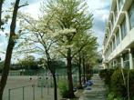 鶴ヶ峯中学校の画像
