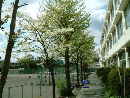 鶴ヶ峯中学校01