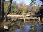 哲学堂公園の画像