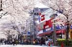 オオゼキ 目黒不動前店の画像