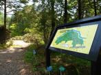 小石川植物園の画像