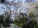 五反田公園の画像