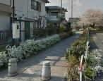 松本2丁目緑道の画像