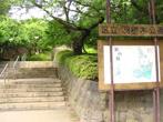 羽根木公園の画像