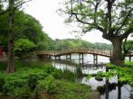 洗足池公園の画像