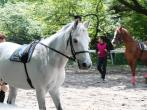 馬事公苑の画像