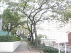 駒込公園の画像
