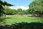 元浜緑地の画像